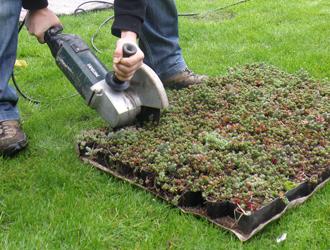 Vegetatiedak zelf aanleggen
