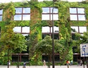 groene_muur.jpg